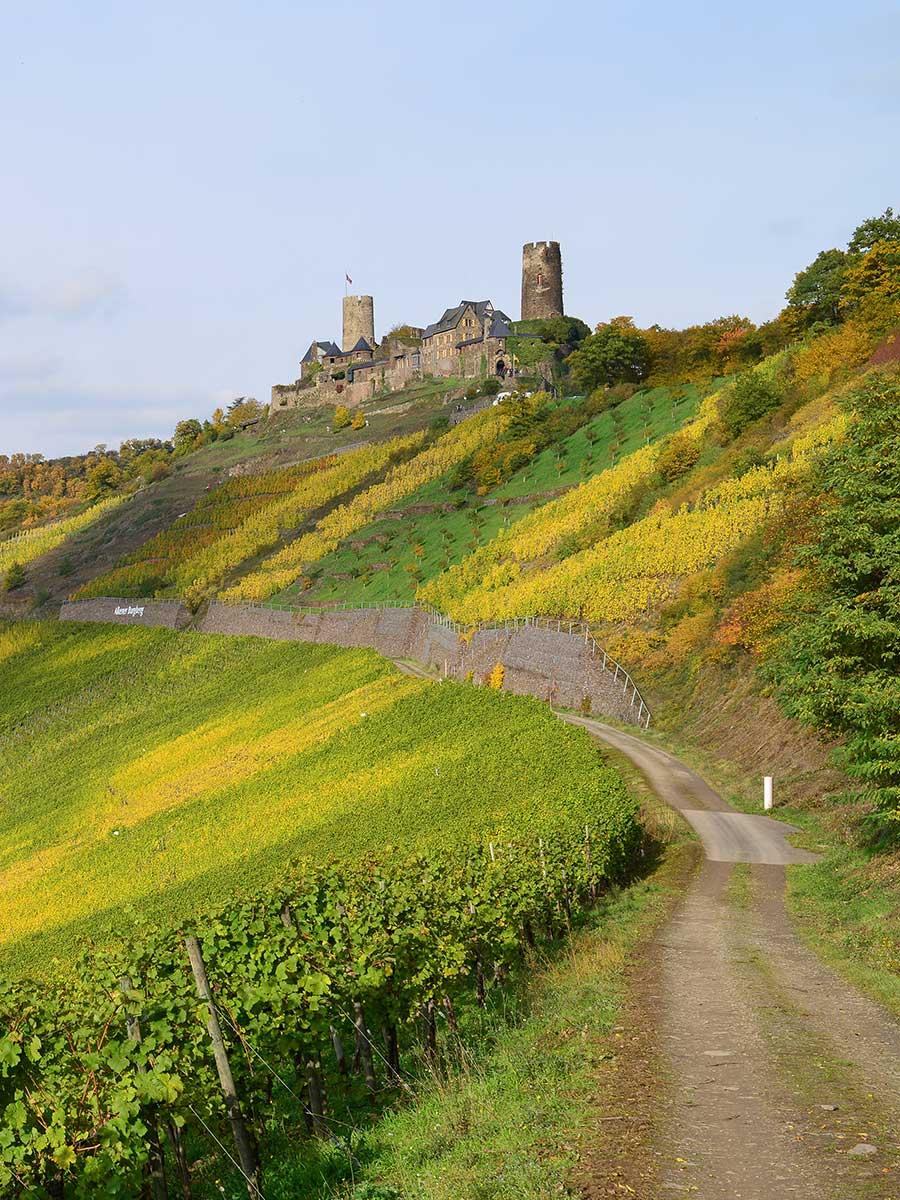 Bed and Breakfast Löffelmühle an der Elz: Ausflüge Burgen und Schlösser - Burg Thurant